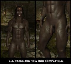 Schlongs now working for my custom race mod